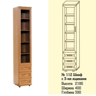 Мод 112, Шкаф для книг и документов с ящ., 39х40х218 см