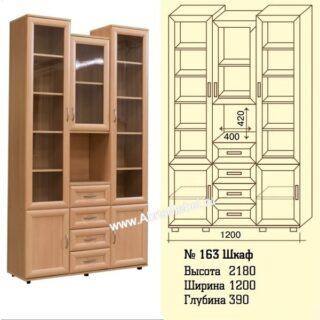 №163 Шкаф для книг и документов