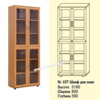 №107 Шкаф для книг и документов