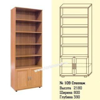 №109 Стеллаж для книг и документов