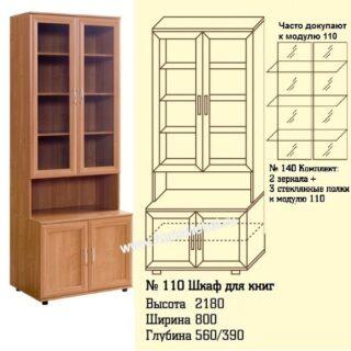 №110 Шкаф для книг и документов