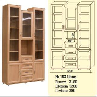 Шкаф для книг и документов №163